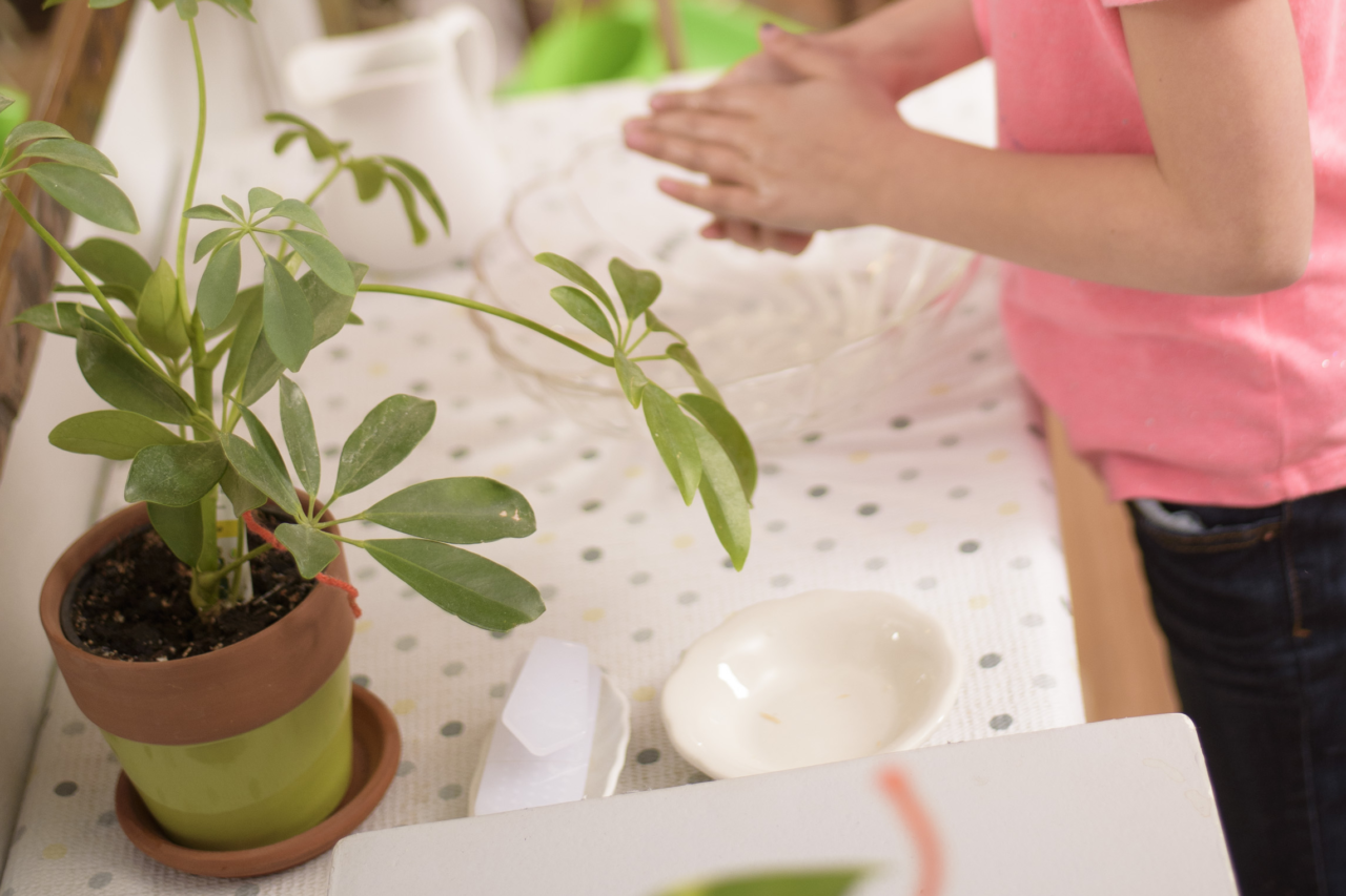 Container Gardening with Children: Botany, Responsibility, Food Preparation, and Compassion